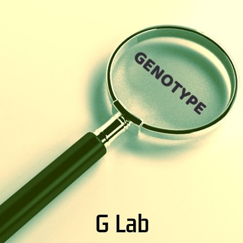 Genotype - Magnify EP - G Lab (Out Now)