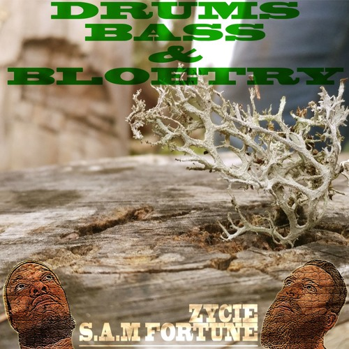 Bloetry (Zycie x S.A.M Fortune)