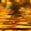Hornpipe (Allegro Maestoso) from Water Music Suite in D- (quartet version)