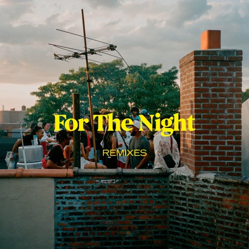 For The Night (JAEL Rmx)