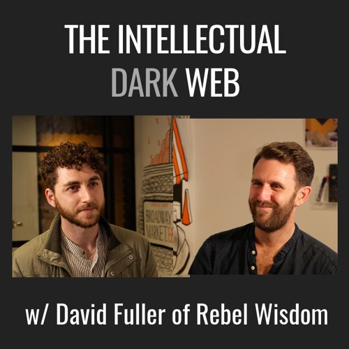 E15| The Intellectual Dark Web & Rebel Wisdom, with David Fuller