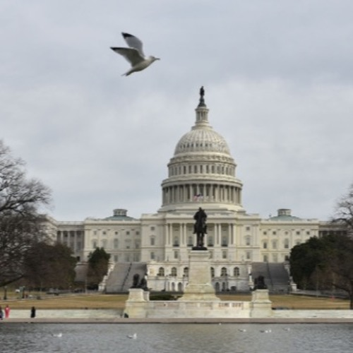 Now it's the Democrats' Turn: Harold Meyerson; Plus, Amy Wilentz on Amos Oz & Alex Press on Amazon