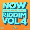 NOW THATS WHAT I CALL RIDDIM VOL. 4