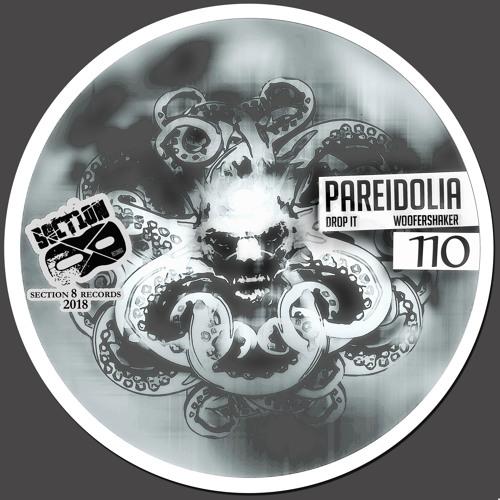 Pareidolia - Drop It [SECTION8110]