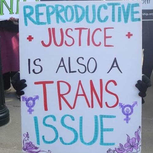 Trans Reproductive Health Researcher AJ Lowik