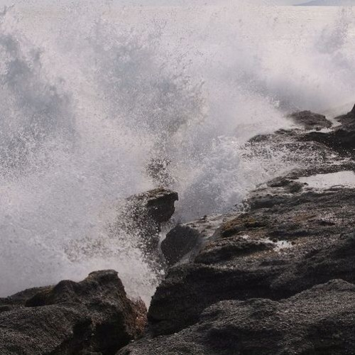 Tsunami. Mon Amour.