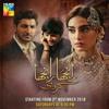Shaala ('Ranjha Ranjha Kardi' Drama OST)