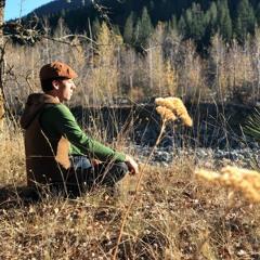 Shepherds Wanderings