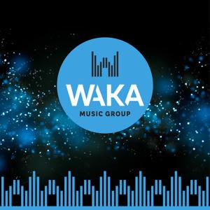ליאור נרקיס & Vivo - פול מון vs. רונה (Waka Music Group Exclusive editing 2019) **הורדה חינם** mp3