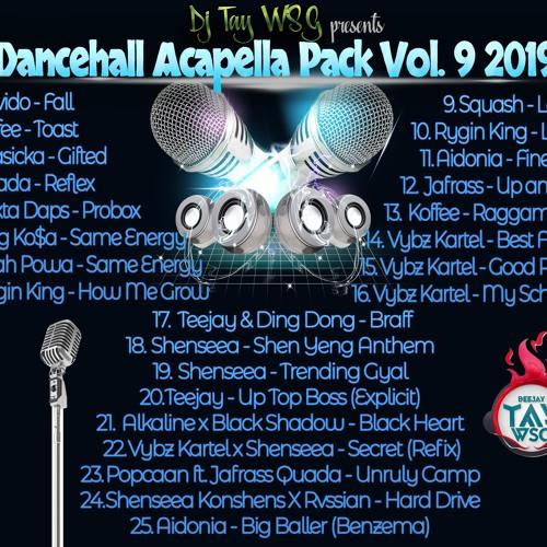 DJ TAY WSG - DANCEHALL ACAPELLA VOL 9 2019 (AUDIO PREVIEW