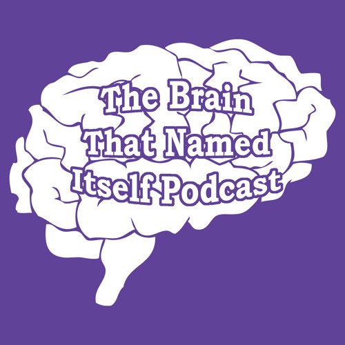 Episode 3 - Is the Human Brain really special Part 2