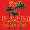 05xx Palm Trees Final Masteriser