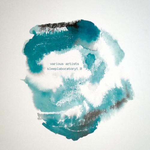 wlr050 Various Artists - Sleeplaboratory1.0