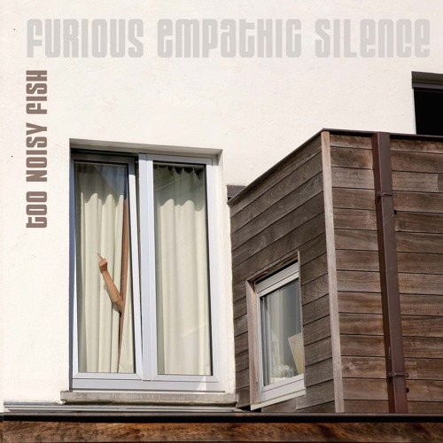 TOO NOISY FISH / Furious Empathic Silence