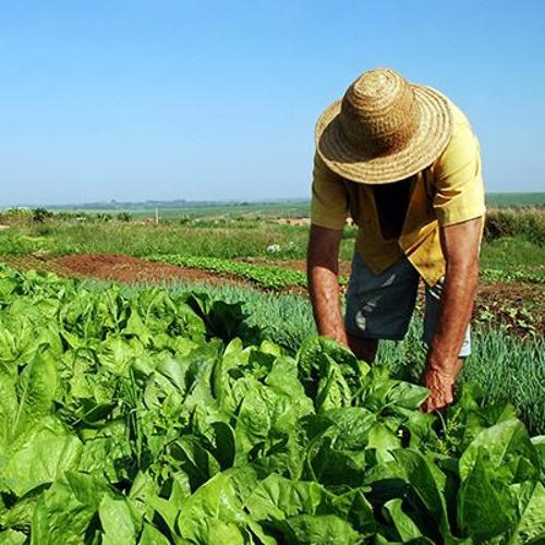 Governo recua e suspende memorando que paralisava reforma agrária no país