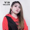 [www.pakarlagu.com] Via Vallen - Karna Su Sayang (Versi Dangdut Koplo)