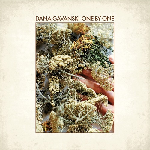 Dana Gavanski - One by One