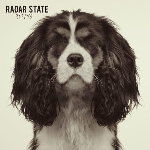 Radar State - Strays (Audio Album Review)