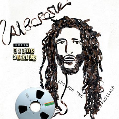 Alborosie - Dub For The Radicals | Alborosie Meets Roots Radics