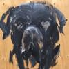 Makaton LIVE - Rottweiler - NYE - 2018