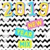 2019 NEW YEAR MIX - DJ NELA
