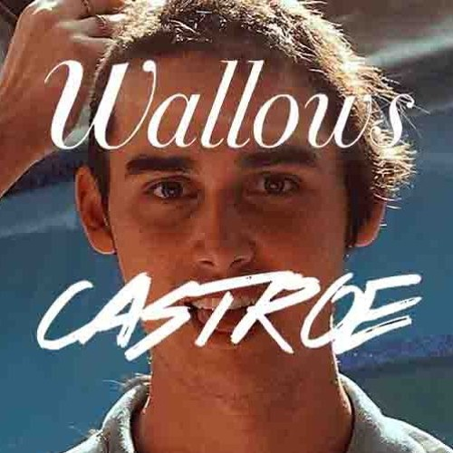 Wallows-Pictures of Girls (CASTROE Remix) FREE DOWNLOAD