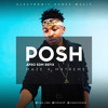Download Posh - Mayorkun Afro EDM Refix by Maze x Mxtreme Mp3