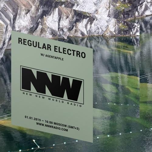 Regular Electro w/ agentapple - 1st January 2019 by New New World