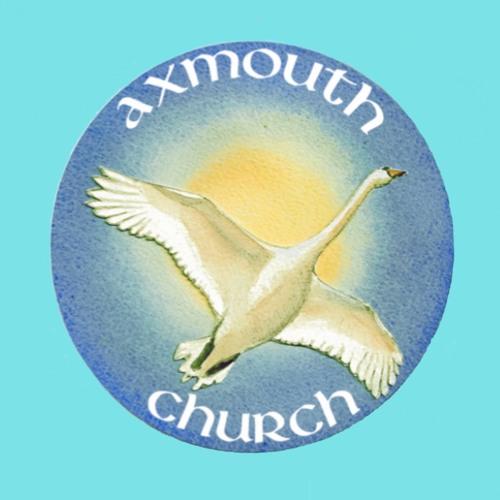 Axmouth 13 Jan 2019