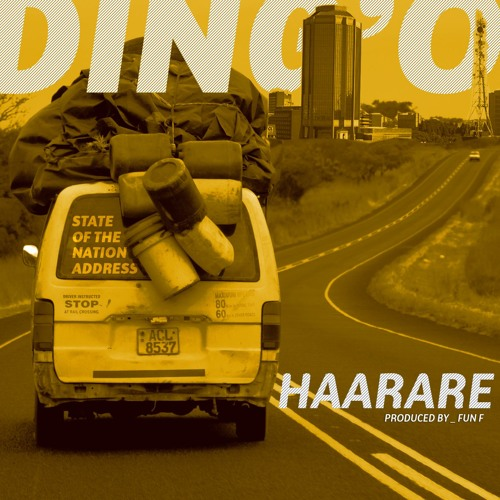 Ding'o _ Haraare _ State of the Nation Address_ 2019
