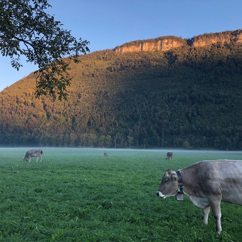Memories of Swiss Summer (Dreamy Winter Variation)