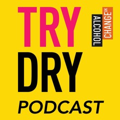 Try Dry Podcast 2 with David Begg from Real Kombucha
