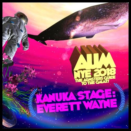 Live @ AUM Festival NYE 2018