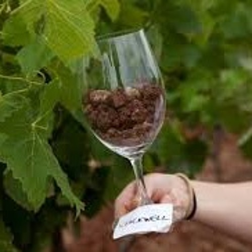 Episode 60-Soil And Wine, Family Wine Business, Wine Myths