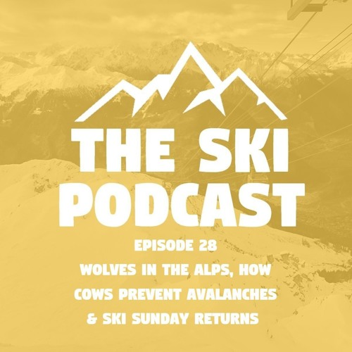 E28 Wolves in the Alps, How Cows Prevent Avalanches & Ski Sunday Returns