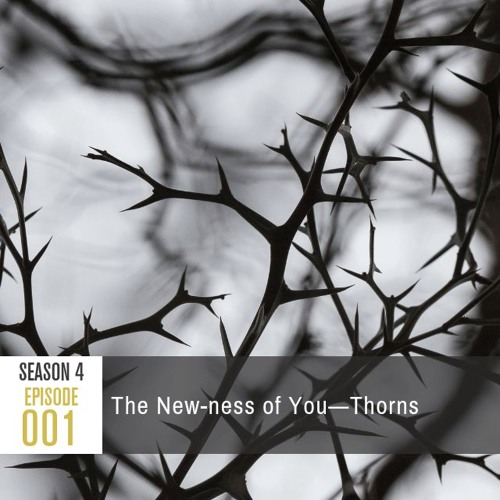 Season 4, Episode 001: The New-ness of You—Thorns