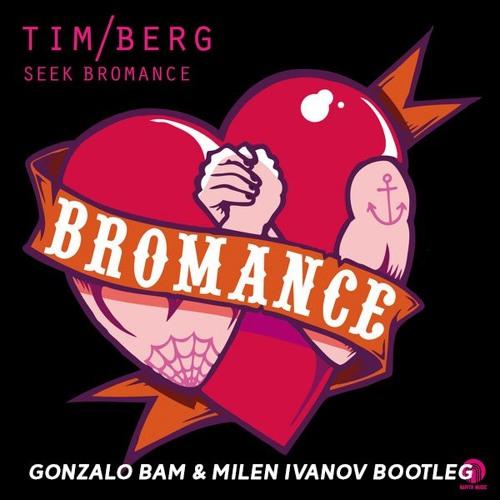 Tim Berg - Seek Bromance (Gonzalo Bam & Milen Ivanov Bootleg) [FREE DOWNLOAD]