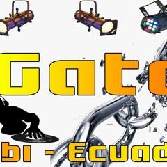 MIX DE RREGUETHON DJ GATO ENERO 2019