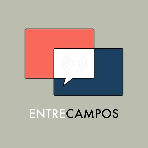Os campos da economia com Sandra Maximiano