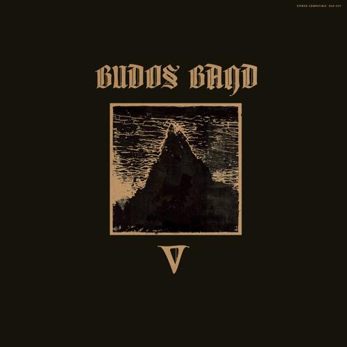 The Budos Band - Veil Of Shadows
