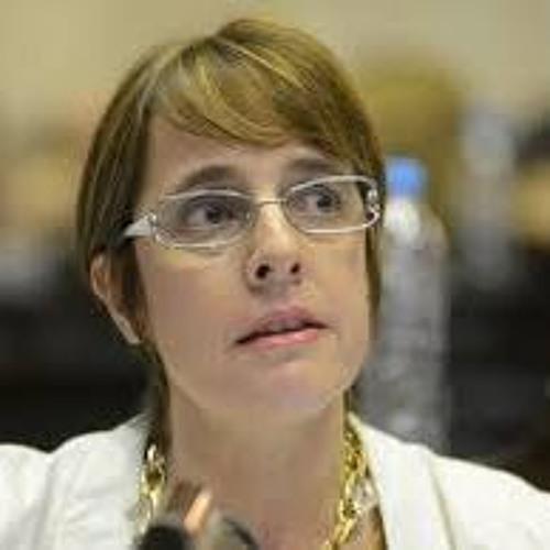 """Dip. Gabriela Burgos UCR - Jujuy  - """"No deben hacer política con el drama del abuso de una nena"""""""