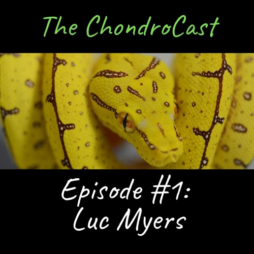 Episode #1: Luc Myers