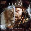 Tenca - Лев (Kolya Funk Radio Mix)