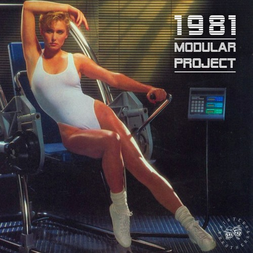 Modular Project - 1981 - Sisters & Brothers Vol. 06