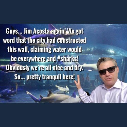 20190116- Acosted - At The Aquarium