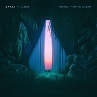 Forgot How To Dream ft. K.Flay