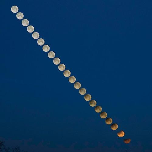 Dean Regas Explains The January 2019 Lunar Eclipse