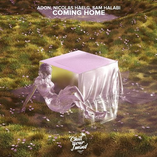 Nicolas Haelg, Sam Halabi, Adon - Coming Home