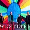 Westlife - Hello My Love (Cover)