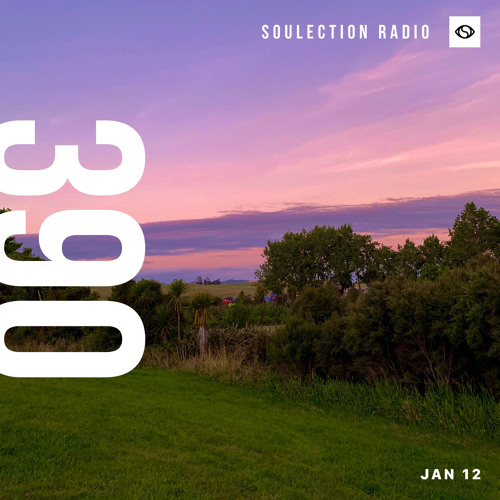 Soulection Radio Show #390